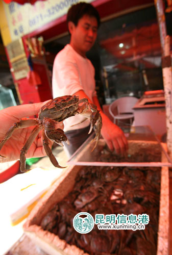 和平村海鲜市场,大闸蟹上市.首席记者龙宇丹/摄