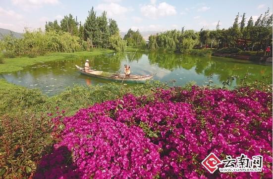 昔日永昌鱼塘如今变身还湖湿地(资料图) 本报记者 付兴华 摄
