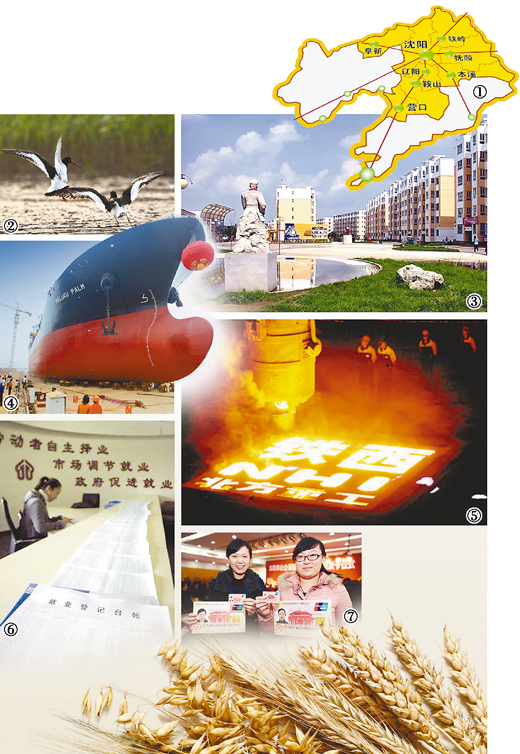 辽宁/图:沈阳经济区区域示意图。