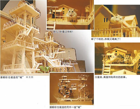 diy木屋设计图