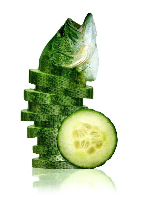 这些小动物变成的蔬菜水果,敢不敢来一发?