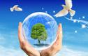 多重政策利好呼之欲出 环保主题基金望获宠